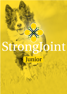 StrongJoint Junior